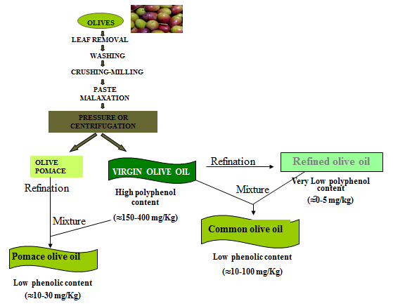 types-of-oliveoil